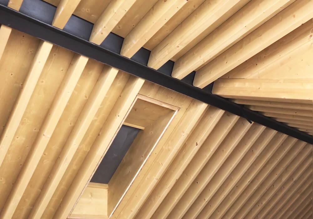 Progetto Via Parini dettaglio tetto